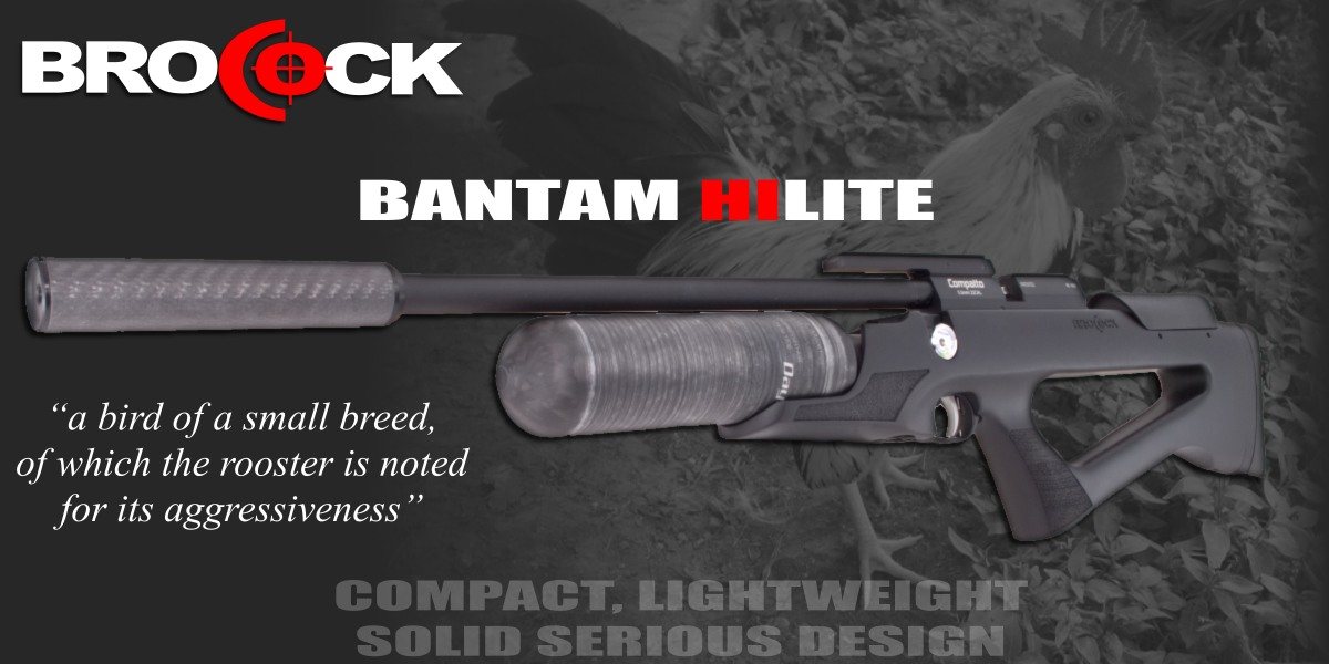 Brocock Bantam Air Rifle